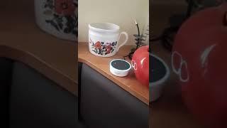1 ALEXA Amazon sagt die Wahrheit über Chemtrails!!!