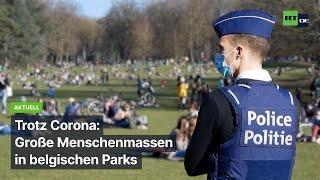 Trotz Corona: Große Menschenmassen in belgischen Parks