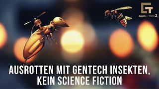 Ausrotten mit Gentech Insekten, kein Science Fiction