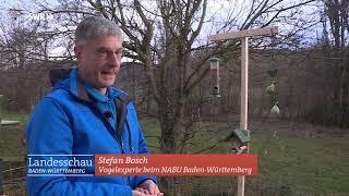 """Naturnahe Gärten - Vögel brauchen einen """"wilden"""" Garten"""