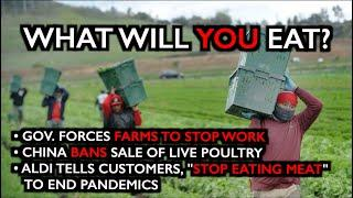 UNBELIEVABLE: Gov. Forces Farms to Shut Down. Food Shortages Imminent.