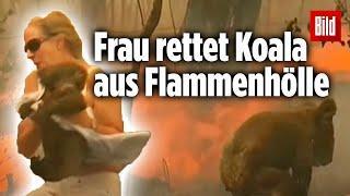 Frau rettet Koala aus Flammen-Hölle Australien 2019