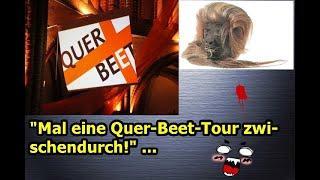 """""""Mal eine Quer-Beet-Tour zwischendurch!!!"""" ..."""