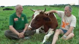 Tierschutz Stiftung Hof Butenland - TierheimTV unterwegs in NDS