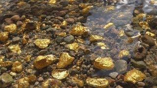 So viel Gold-Nuggets kann man in einem gewöhnlichen Bach finden