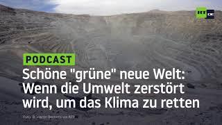 """Schöne """"grüne"""" neue Welt: Wenn die Umwelt zerstört wird, um das Klima zu retten"""