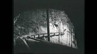 Viktor Schauberger Historischer Film Tragendes Wasser