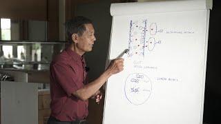 Sucharit Bhakdi erklärt die Wirkungen der neuartigen Impfungen