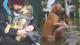 Ein Leben ohne Hund ist möglich - Aber sinnlos