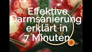 Effektive Darmsanierung - Top-Thema zur Gesundheit - erklärt in 7 Minuten - Walter Häge & Dr.M.Vogt