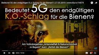 Schrumpfkopf TV Trailer / Heimat Blues und Bienensterben durch 5G