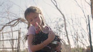 Der Traum eines kleinen Mädchens, das Tiere liebt