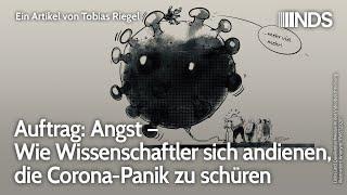 Auftrag: Angst – Wie Wissenschaftler sich andienen, die Corona-Panik zu schüren   Tobias Riegel