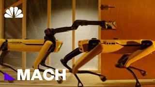 Boston Dynamics\' 4-Legged Robot Spot Could Be Coming To An Office Near You | Mach | NBC News