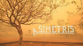 Asimetris – eine Dokumentation über Palmöl in Indonesien