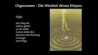 """""""Organwesen"""" von Ewald Kliegel und Anne Heng"""