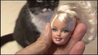 Überwachung durch Spielzeug ! Barbie Gets Hacked!