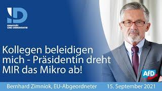 Abgeordneter  Bernhard Zimniok MdEP wird übel beleidigt, weil er die Wahrheit sagt - Präsidentin dre