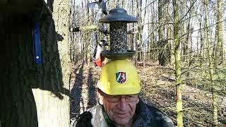Ornithologie  -  Experiment - Wenn einer nicht nur einen Vogel hat ....
