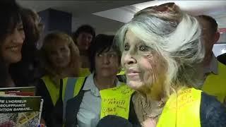 Brigitte Bardot (84 ans) à fond derrière les Gilets Jaunes ! (Fréjus)