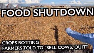 """FOOD SHUTDOWN: Farmers Told to """"QUIT FARMING"""""""