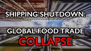 Shipping Shutdown: Exporters Warn of Global Food Trade Collapse