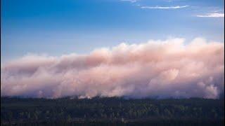 Waldbrand-Großeinsatz: Katastrophenalarm in Mecklenburg