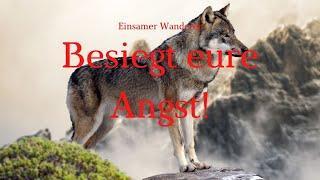 Wandernder Wolf 11 - neue WHO-Studie: Todesrate bei Covid geringer als angenommen!
