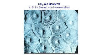 CO2 verringern ? das Gegenteil wäre richtig ! Vortrag von Friedrich-Karl Ewert