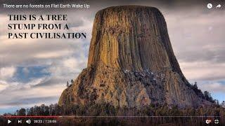 Gigantisch grosse Bäume vor der Flut - There are no forests on Flat Earth Wake Up