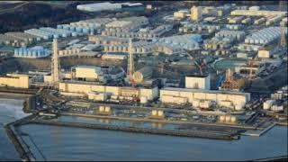 Food and Health Emergency! Highly Radioactive Fish Contaminated with Cesium Caught Near Fukushima