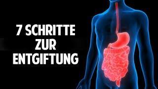 Die 7 Schritte zur Körperentgiftung: Ein gesundes Leben mit dem Entgiftungs-Konzept