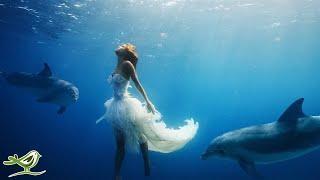 Harmonische Klänge - wundervolle Bilder - Peder B. Helland - Dance of Life