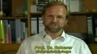 Deutsche Wissenschaftler widerlegen die Evolutionstheorie - Teil 1