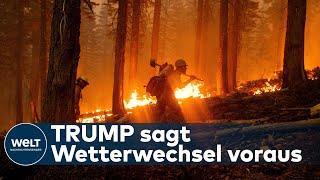 TRUMP LEUGNET KLIMAWANDEL: Gigantische Brände verwüsten den Westen der USA