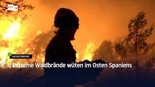 Extreme Waldbrände wüten im Osten Spaniens