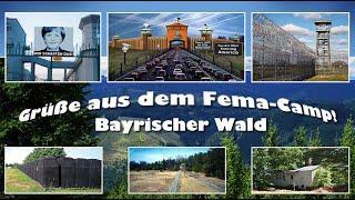 Bewusstseinserweiterung durch FEMA-Camps