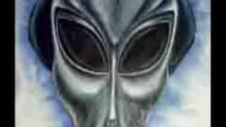 Alien Rassens 2 - Greys and Reptilians