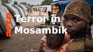 Mosambik: Wieder Terror im Namen Allahs  - ARTE Reportage