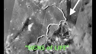 """Very OBVIOUS """"Vehicle"""" on the Surface of the Moon! Possibly an Outpost ????"""