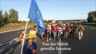 Wie die Asyleinwanderung Deutschland zerstört