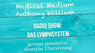 Das Lymphsystem verstehen und unterstützen
