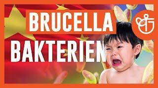 Brucella China - Bakterium aus Labor infiziert in China tausende Menschen!