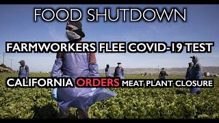 FOOD SHUTDOWN: Farmworkers flee COVID-19 tests - CA Orders Meat Plant Closure