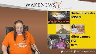 Die Instinkte des BÖSEN - Wa(h)r da was? Talk mit Michael - Wake News Radio/TV 20190924