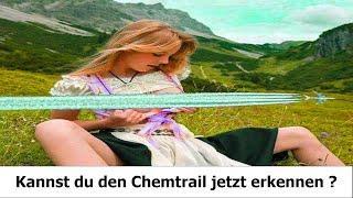 FEDEX Flugzeug kollidiert fast mit Chemtrail - Bombern