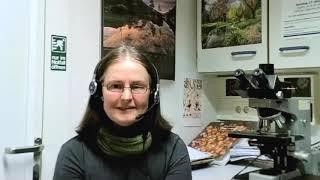 Prof. Dr. Ulrike Kämmerer zum PCR Test