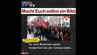 Corona-Demo in Wien: Was von Politik und Medien gerne verschwiegen wird…