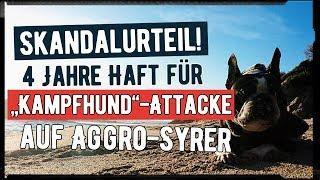 """Skandalurteil! 4 Jahre Haft für """"Kampfhund""""-Attacke auf Aggro-Syrer"""