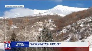 Another Bigfoot sighting reported near Provo, Utah
